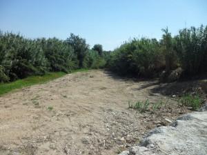 Limpieza arroyo del valle2 [800x600]