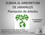 wpid-subida-arboretum-ii-2.jpg.jpeg